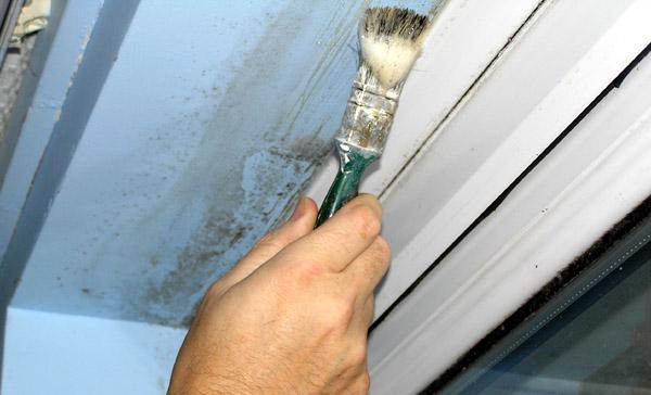 elegant schimmel behandelen with schimmel in huis verwijderen